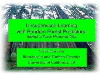 Unsupervised Learning with Arbitrary Timberland Indicators: Connected to Tissue Microarray Information