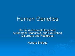 Human Hereditary qualities