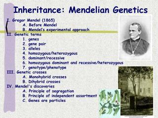 Legacy: Mendelian Hereditary qualities