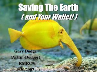 Sparing The Earth ( and Your Wallet! )