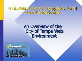A Manual for the TampaGov Entrance TampaGov