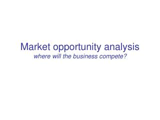 Market opportunity investigation where will the business contend?