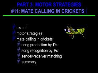 exam I engine techniques mate bringing in crickets tune generation by ? s melody acknowledgment by ? s sender-recipient