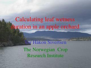 Computing leaf wetness term in an apple plantation