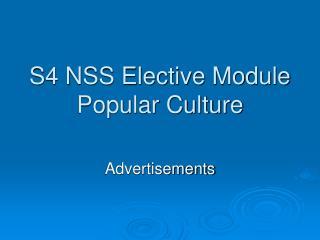 S4 NSS Elective Module Pop culture