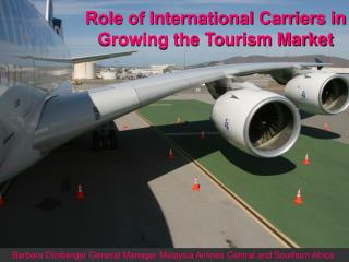 Part of Worldwide Bearers in Developing the Tourism Market