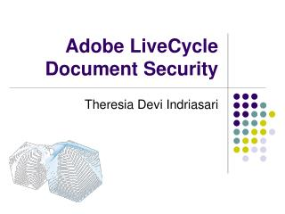 Adobe LiveCycle Record Security