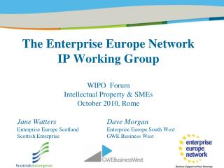 The Undertaking Europe System IP Working Gathering WIPO Discussion Protected innovation and SMEs October 2010, Rome
