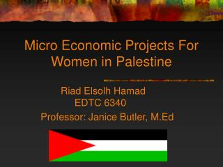 Small scale Financial Ventures For Ladies in Palestine