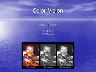 Shading Vision