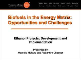 Biofuels in the Vitality Network: Opportunities and Difficulties