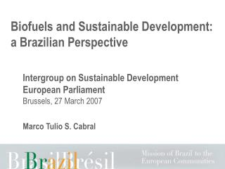 Biofuels and Practical Improvement: a Brazilian Point of view