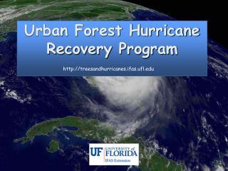 Urban Woodland Storm Recuperation Program