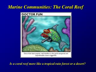 Marine Groups: The Coral Reef