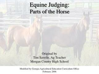 Equine Judging: Parts of the Steed