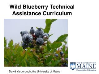 Wild Blueberry Specialized Help Educational programs