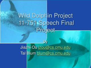 Wild Dolphin Venture 11-751 Discourse Last Venture