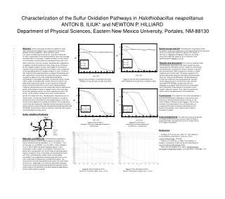 Portrayal of the Sulfur Oxidation Pathways in Halothiobacillus neapolitanus ANTON B. ILIUK and NEWTON P. HILLIARD
