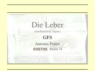 Pass on Leber medizinisch: hepar