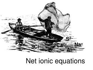 Net ionic mathematical statements