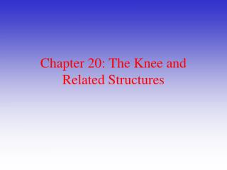 Section 20: The Knee and Related Structures