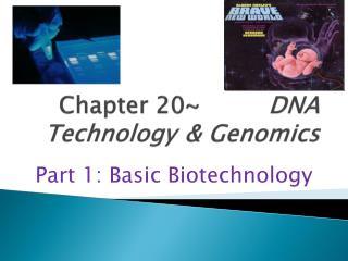 Part 20 DNA Technology Genomics