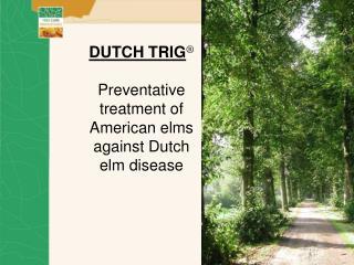 DUTCH TRIG Preventative treatment of American elms against Dutch elm illness