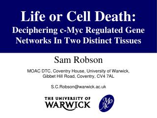 Life or Cell Death: Deciphering
