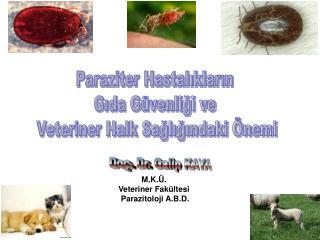 Paraziter Hastaliklarin Gida G venligi ve Veteriner Halk Sagligindaki nemi