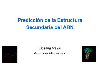 Predicci n de la Estructura Secundaria del ARN Rosana Matuk Alejandra Massacane