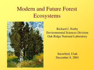 Cutting edge and Future Forest Ecosystems