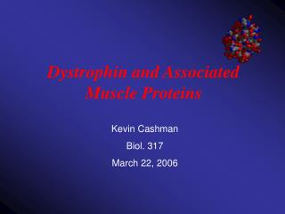 Dystrophin and Proteins - Bellarmine University