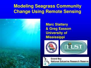 Displaying Seagrass Community Change Using Remote Sensing