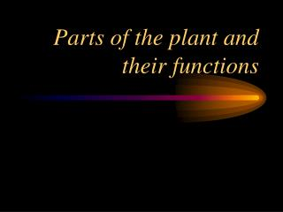 Parts of the plant and their capacities