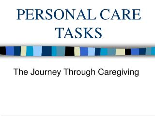Individual CARE TASKS