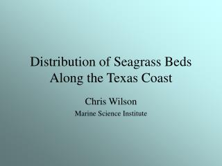 Dissemination of Seagrass Beds Along the Texas Coast