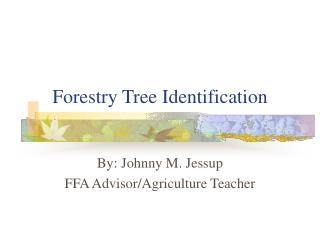 Ranger service Tree Identification