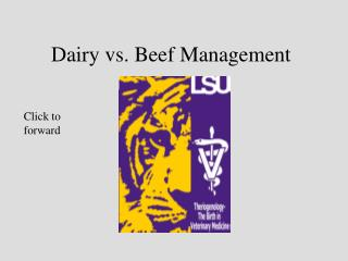 Dairy versus Hamburger Management