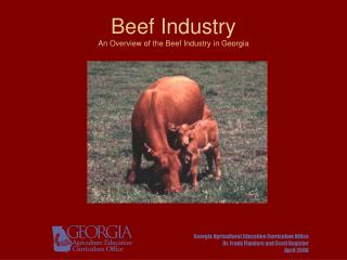 Hamburger Industry An Overview of the Beef Industry in Georgia