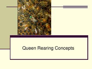 Straightforward Queen Rearing