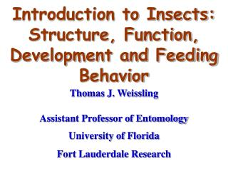 Prologue to Insects: Structure, Function, Development and Feeding Behavior