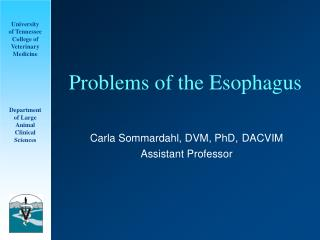 Issues of the Esophagus