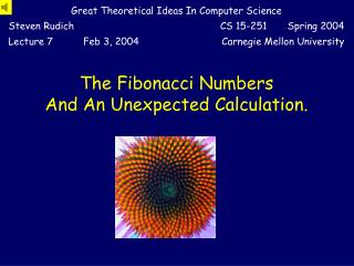 The Fibonacci Numbers And An Unexpected Calculation.