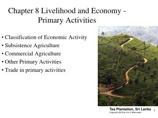 Section 8 Livelihood and Economy - Primary Activities