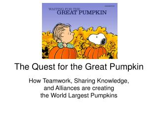 The Quest for the Great Pumpkin