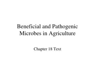Helpful and Pathogenic Microbes in Agriculture