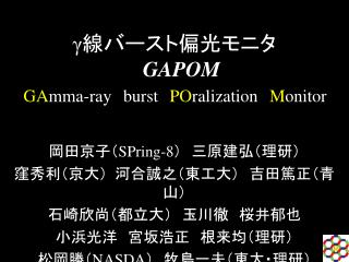 GAPOM GAmma-beam burst POralization Monitor