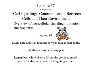 Address 7 Chapter 15 Cell flagging: Communication Bet