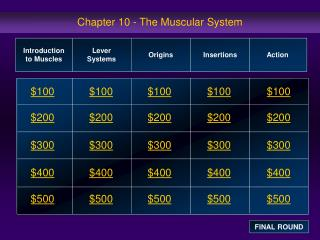 Section 10 - The Muscular System