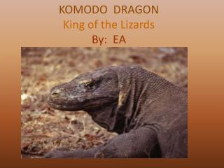 KOMODO DRAGON King of the Lizards By: EA